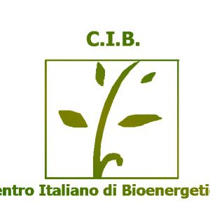 cropped-cib-logo-1.png
